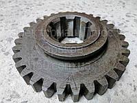 151.37.129-2 Шестерня Т-150, фото 1
