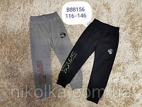 Спортивные брюки для мальчиков оптом, Grace, 116-146 рр., арт. B88156