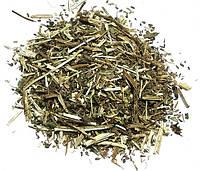 Иссоп лекарственный трава 1кг