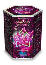 Набір з вирощування кристалів GROWING CRYSTAL (GRK-01-08)