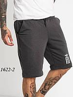 Спортивные шорты мужские  Mishely  №1622