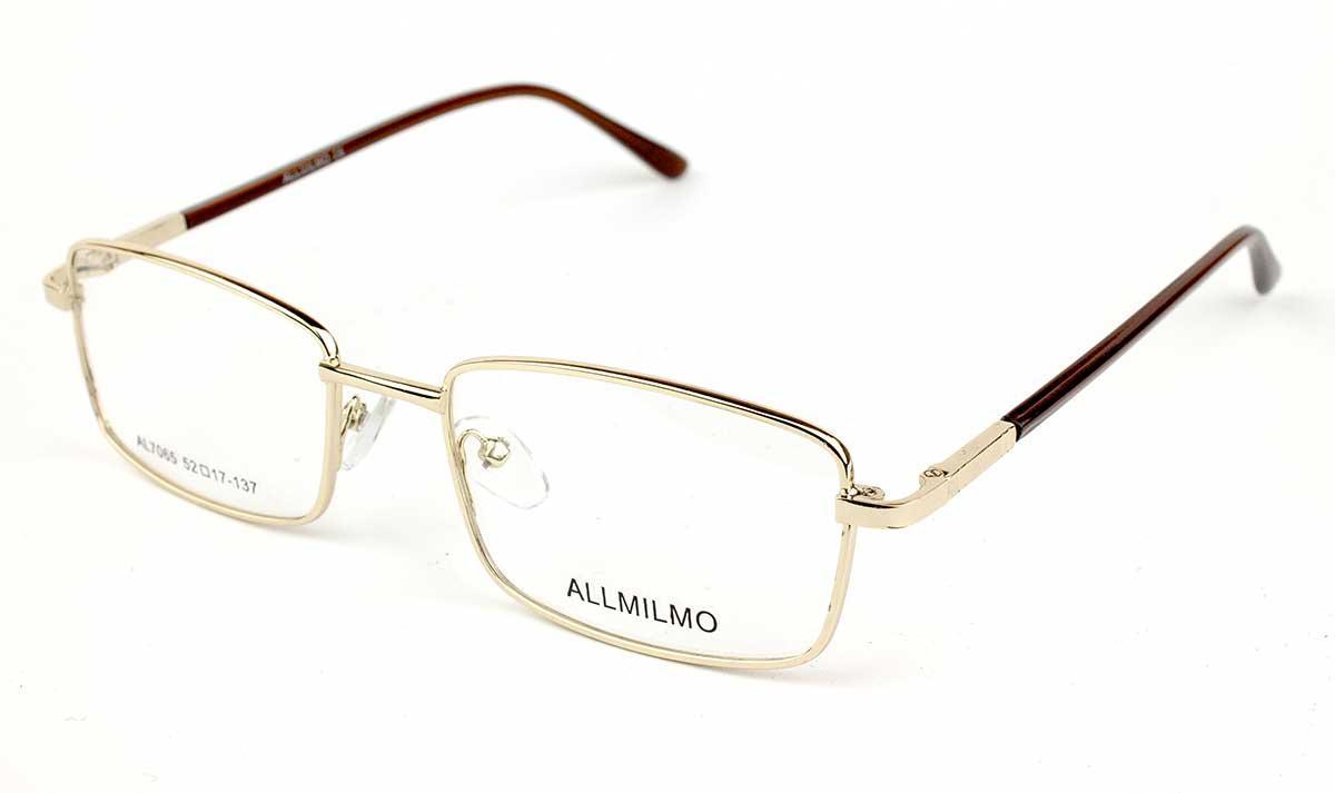 Оправа для очков Allmilmo AL7065-J01