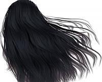 Краска для волос с пчелиным воском Echosline 1.0 черная/фарба для волосся Echosline чорна 1.0 100 мл