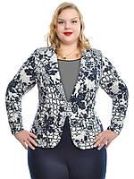Пиджак женский,размеры 48-62,модель ДК 540