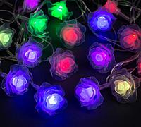 Гирлянда Розы 20LED 5720 разноцветная на батарейках | Новогодняя светодиодная бахрома Цветы мультиколор