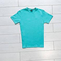 Мужская футболка Peremoga Pobedov (ментоловая)