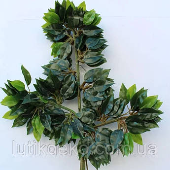 Искусственная зелень. Ветки фикуса латеск, зеленые.