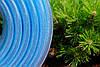 Шланг поливальний Evci Plastik високого тиску Export діаметр 32 мм, довжина 50 м (VD 32 50), фото 3