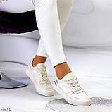 Люксовые светлые молочные женские кроссовки кеды на шнуровке в ассортименте 38-24см, фото 7