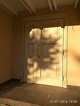 Зовнішні (вхідні) двері під замовлення, фото 3