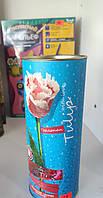Бисерный цветок Тюльпан