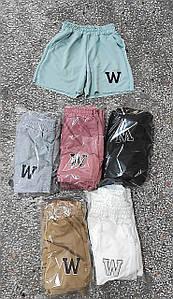 Спортивні трикотажні шорти універсальні 42-46 (в кольорах)