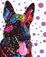 Раскраска по номерам Красочный Рекс GX30867 Brushme 40 х 50 см (без коробки)