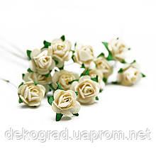Букет троянд Open Rose, 12 шт Cream