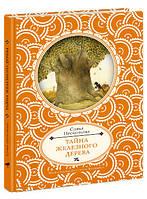 Детская книга Софья Прокофьева: Тайна железного дерева