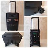 Портативна акумуляторна акустична система Temeisheng A12-44, фото 8