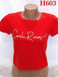 Коротка футболка з написом 40-44 (в кольорах)