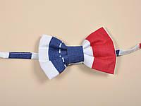 Краватка-метелик, морська