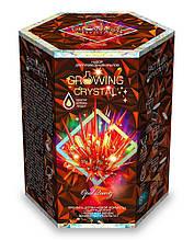 Набір з вирощування кристалів GROWING CRYSTAL (GRK-01-06)