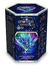 Набір з вирощування кристалів GROWING CRYSTAL (GRK-01-04)