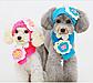 Комплект шапка и шарфик для маленьких собак голубого цвета, фото 2