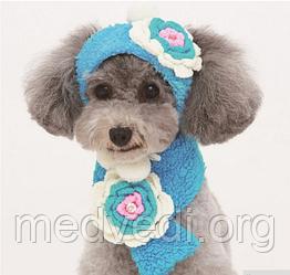 Комплект шапка и шарфик для маленьких собак голубого цвета