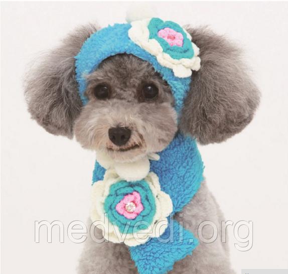 шапка и шарфик для маленьких собак