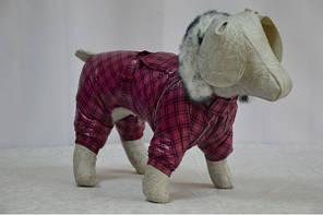 Комбинезон для собак Мимоза теплый  с меховой опушкой