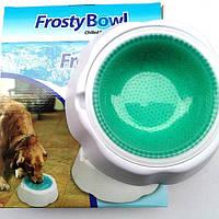 Охолоджуюча миска для води для домашніх тварин Frosty Bowl, миска для собак з охолоджуючим гелем