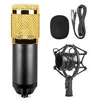 Студійний конденсаторний мікрофон DM-800 зі стійкою і вітрозахистом Black/Gold
