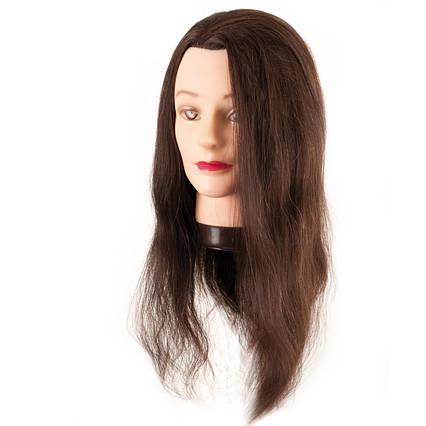 Манекен-голова Eurostil з натуральними волоссям 45-50 см