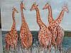 """Картина """"Жирафы"""""""