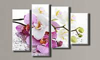 Модульная картина Орхидеи на стекле 70х102 см (Картины на холсте в подарок, постеры, фотокартина, Триптих)