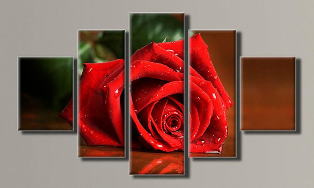 Модульная картина Роза 70х117 см (Красивые картины на холсте в подарок, постеры, фотокартина, Триптих)