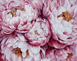 Картина по номерам Нежно-розовые пионы худ. Диана Тучс VP1409 Babylon Turbo 40 х 50 см
