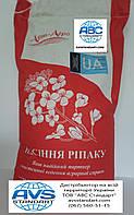Рапс озимый Джордан РС под раундап. Семена озимого рапса Джордан с урожайностью 45ц/га под глифосат.