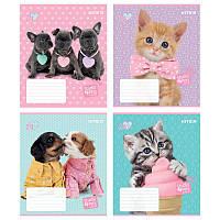 Зошит 24 клітинка Studio Pets софт-тач + УФ КІТЕ (16/320)