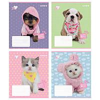 Зошит 24 лінія Studio Pets софт-тач КІТЕ (16/320)