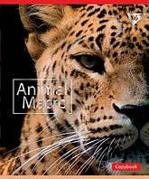 Зошит 12 лінія ANIMAL MACRO мат. ВДЛ+фольга срібло МІКС Yes
