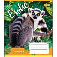 Зошит 12 клітинка EXOTIC ANIMAL 1Вересня (25/500)