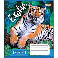 Зошит 24 клітинка EXOTIC ANIMAL 1Вересня (20/320)