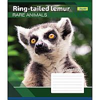 Зошит 24 клітинка RARE ANIMALS 1Вересня (20/320)