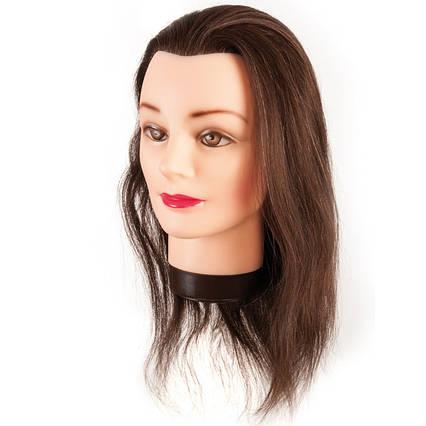 Манекен-голова Eurostil натуральные волосы 35-40 см