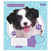 Зошит 12 клітинка Keith Kimberlin. Pet portrait 1Вересня (25/500)