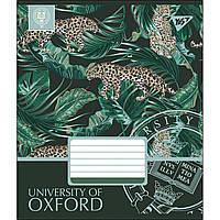 Зошит 18 клітинка OXFORD мікс 4 обкладинки Yes (25/400)