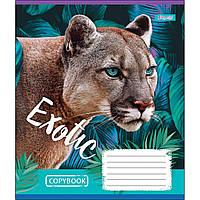 Зошит 18 лінія EXOTIC ANIMAL мікс 4 обкладинки 1Вересня (25/400)