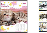 Зошит 24 клітинка LOVE ANIMALS 1Вересня 20/320