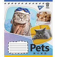 Зошит 12 лінія Pets shoot Yes (25/500)