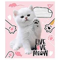Зошит 18 клітинка Live love meow Yes (25/400)
