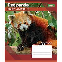 Зошит 24 лінія RARE ANIMALS, 1Вересня (20/320)